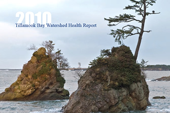 TBay Health Report cover